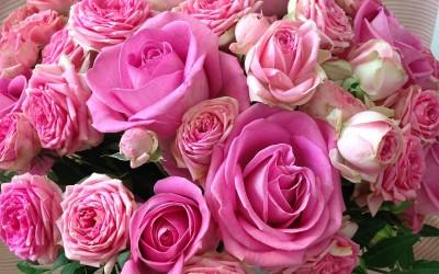 Latón de Rosas variadas