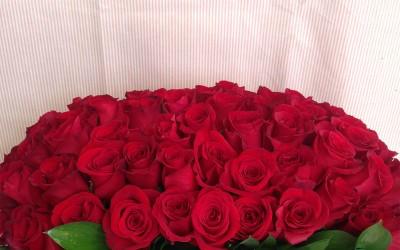 Caja de Rosas maxi
