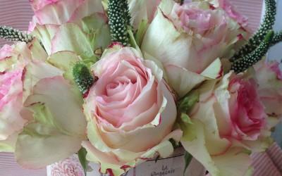 Laton Rosas y Verónicas