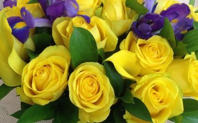 Latón de Rosas e Iris